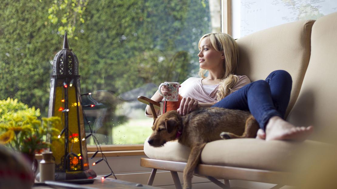 Fotografie einer jungen Frau vor einem Panoramafenster mit Hund auf einem gemütlichen Sofa sitzend.